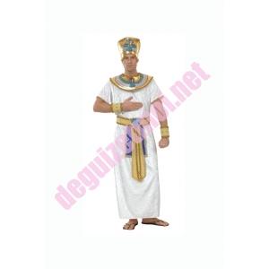http://www.deguizetmoi.net/105-239-thickbox/costume-location-egyptien-donnezac-haute-gironde.jpg