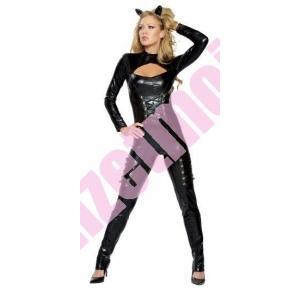 http://www.deguizetmoi.net/344-634-thickbox/location-catwoman-batman-deguisement-deguizetmoi-donnezac-bordeaux-libourne.jpg